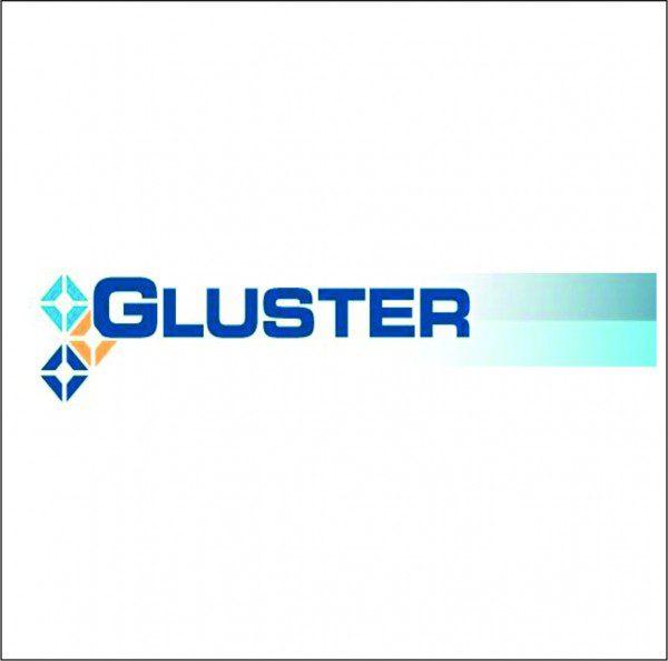 GlusterFS Storage