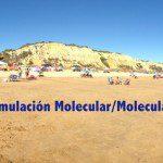 III Escuela de Simulación Molecular