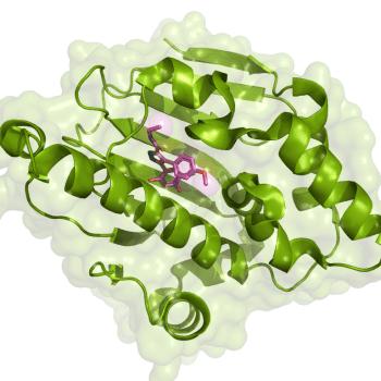 nueva_molecula